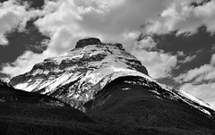 Mount Amery (Black & White) (thor_mark ) Tags: trees canada mountains nature blackwhite snowcapped evergreen alberta day4 banffnationalpark lookingwest icefieldsparkway canadianrockies evergreentrees highway93 project365 mountainsindistance mountamery blueskieswithclouds nikond800e mountainsoffindistance hillsideoftrees lyellgroup centralmainranges centralicefields