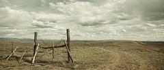 (LuminousWest) Tags: cinema west fence landscape sigma dp luminous foveon quattro x3f dp0 luminouswest dp0q dp0q2302