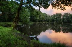 Oase der Ruhe (Rainer Schund) Tags: reflection nature water mirror see abend nikon wasser sonnenuntergang natur wolken mirage der oase ruhe nikond700 naturemasterclass natureexploring