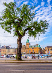Strandvgen, Stockholm (anders.pontara) Tags: trd trees tree nybroviken strandvgen stockholm