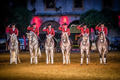Caballerizas Reales de Cordoba (kellyjrusso) Tags: horse spain cowboy andalucia cordoba andalusia vaquero