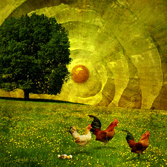 ChickenWorld (clabudak) Tags: flowers sun tree chickens grass yellow egg surreal fantasy ii chicks netart hens