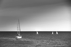 De vela al atardecer (Fnikos) Tags: sea sky blackandwhite water monochrome skyline boats boat outdoor vehicle serene
