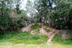 Edward Medard Phosphate Mine Hiking Trails (dixiestitch19) Tags: camping florida freshwater campgrounds edwardmedardpark