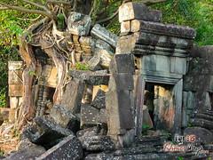Chau Srey Vibol- Khmer Cruiser.jpg