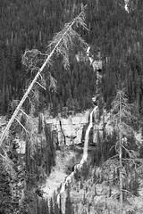 Bridal Veil Falls (Goldensoles) Tags: summer canada canon landscape nationalpark alberta bridalveilfalls jaspernationalpark 2011 xti canonef70200mmf4lusm canoneosrebelxti