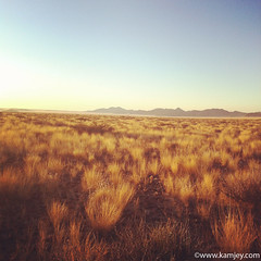 endless view (kamjey) Tags: travel mountains yellow photography desert fields namibia hoodialodge