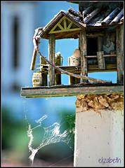 Abandoned Urban Housing (elizgely) Tags: elementsorganizer