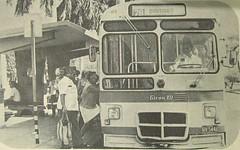 Giron-XII HV-5446 (Adrian (Guaguas de Cuba)) Tags: bus buses volvo coach gm havana cuba terminal habana hino omnibus nacionales guagua giron cubanos urbanos oldbus ikarus americanbus japanbus omnibusnacionales