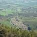 Rhodendron Over Loughglenbridge