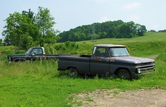 OUT TO PASTURE (richie 59) Tags: usa chevrolet abandoned field rural america outside us spring weeds rust gm unitedstates country rusty pickup headlights grill faded chevy pasture rusted trucks newyorkstate sideview automobiles cheyenne obsolete 2012 pickuptrucks chevys wornout nystate chevrolettrucks wallkill generalmotors hudsonvalley chevytruck 2door motorvehicles fadedpaint oldtrucks c10 ulstercounty twodoor midhudsonvalley chevyc10 rustytrucks chevytrucks ulstercountyny gmtrucks rustychevy chevycheyenne 1960struck ustrucks americantrucks chevypickuptruck oldchevys oldpickuptrucks chevroletpickuptruck abandonedtrucks wallkillny longabandoned oldchevytrucks oldrustytrucks rustychevytruck americanpickuptruck richie59 may2012 1970struck townofshawangunk greytrucks cheyenne20 may262012 townofshawangunkny