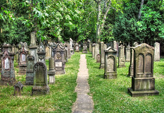 Jewish Cemetery Stuttgart (Habub3) Tags: park travel friedhof holiday tree green texture nature cemetery grave graveyard forest canon germany garden deutschland europa europe stuttgart path urlaub headstone natur peaceful atmosphere powershot historic gravestone jewish grab wald baum hdr vacanze 2012 weg reise grabsteine g12 historisch jdisch hoppenlau israelitisch habub3 mygearandme
