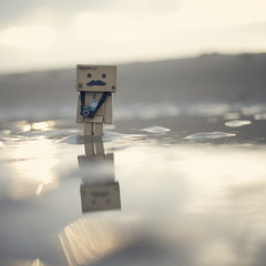 Mr Mustache at the beach (Morphicx) Tags: canon5d canon50f14 danbo oostkapelle