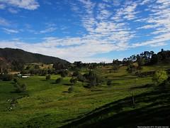 Alto de la Honda (Ivan Mauricio Agudelo Velasquez) Tags: cloud arbol cielo campo potrero nube agro