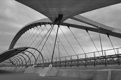 Acero y Cemento B/N (mixtli1965) Tags: city bridge blackandwhite bw blancoynegro architecture puente nikon cityscape perspective zaragoza perspectiva expo2008 tercermilenio nikond3100