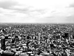 eastasia.   (jdx.) Tags: blackandwhite building monochrome japan buildings landscape tokyo shinjuku aerial 1984   grayscale dystopia dystopic jdx tokyomunicipalbuilding