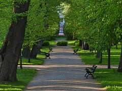 Passing by in the distance (KaarinaT) Tags: trees girl finland evening helsinki dusk walkway serene manor eveninglight herttoniemi manorhouse kartano herttoniemenkartanonpuisto herttoniemimanorhousegardens