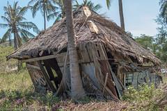 abandoned cottage (Robert Benatzky Picture) Tags: thailand island outdoor cottage htte insel architektur kohphangan dach gebude verlassen lostplaces totallythailand