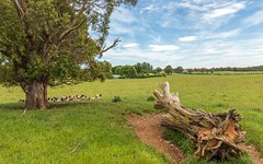 988 Charleys Forest Road, Braidwood NSW
