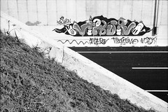 Near Milano (=Gibo=) Tags: bw analog blackwhite hc110 bn homemade analogue across m6 elmar bianconero analogic analogico selfdeveloping