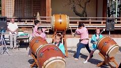 #8190 drum () performance (Nemo's great uncle) Tags: tokyo drum  kameido kotoku   kameidotenjin
