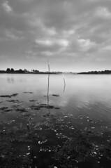 Saint-Cado - atana studio (Anthony SJOURN) Tags: beach port golf studio bretagne anthony cote bateau plage morbihan peche ponton rochers barque ocan saintcado atana sjourn
