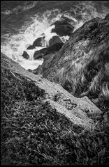 looking down, cliff,rocks, surf, White Head, Monhegan, Maine, Bencini Koroll 24S, Ilford FP4+, Ilford Ilfosol 3 Developer, 5.17.16 (steve aimone) Tags: blackandwhite cliff seascape 120 film monochrome mediumformat rocks surf maine monochromatic cliffs whitehead lookingdown monhegan ilfordfp4 monheganisland cliffside bencinikoroll24s epsonperfectionv500 ilfordilfosol3developer