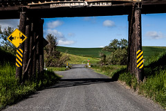 Low Clearance (Culinary Fool) Tags: rollinghills usa washington bridge 2016 trestle wa brendajpederson travel road photography palouse roadtrip culinaryfool sign may hills travelwa 2470mm28