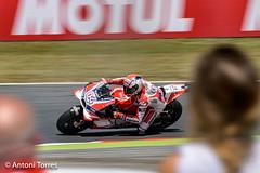 Viendo pasar a Dovizioso (vfr800roja) Tags: motogp gp carrera montmel 2016 andreadovizioso ducatigp