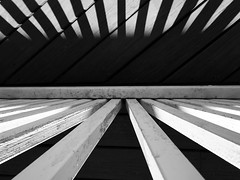 Day 177/366 Looking down at my deck. (Tewmom) Tags: blackandwhite monochrome pattern diagonal abstract lines symmetry geometric architecture minimalism beam texture buildingstructure 366the2016edition 3662016 day177366 25jun16