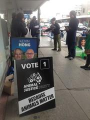 Visiting Glenroy Pre-poll for #Wills2016 (John Englart (Takver)) Tags: election wills glenroy prepoll ausvotes ausvotes2016 wills2016