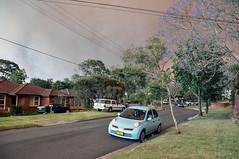 0006 Bushfire Smoke.jpg (Tom Bruen1) Tags: 2013 bushfire gardeniaparade greystanes jacarandatree smoke