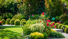 Garden Landscape (randyherring) Tags: california ca morning flowers trees roses plants sunlight lamp garden us flora unitedstates outdoor relaxing birdhouse sidewalk shade hedge vegetation if bloom losgatos landscaped bloomingflower