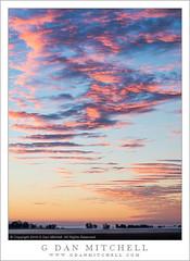 Winter Dawn, Sacramento Valley (G Dan Mitchell) Tags: california winter sky usa nature fog america sunrise landscape dawn wildlife north central valley sacramento refuge colusa