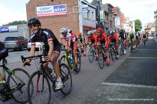 Herenthout (133)