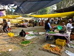 IMG_5629 (felice_) Tags: life trip travel india colors canon asia agra varanasi colori viaggi jaipur newdelhi vita