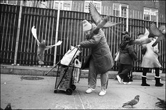 bird lady (Matthew Vinci) Tags: street city newyorkcity people blackandwhite bw newyork photography women streetphotography vinci matthewvinci
