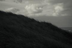 dreaming myself away (Sandra Wittmann) Tags: travel sea holland clouds landscape blackwhite nikond70s dreaming splittone callantsoog lr4 lightroom4