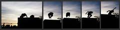Parkour (Chubakai) Tags: color atardecer jump buenosaires mosaico salto siluetas puertomadero parkour mariodominguez oulala ltytr1 oulalacommx chubakai marioedominguezb