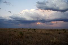 Texas Panhandle (sarowen) Tags: sunset yuccas clouds landscape texas 20 yucca panhandle stormclouds texaspanhandle top20texas bestoftexas