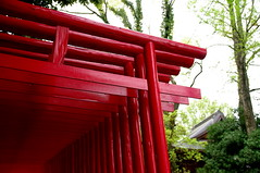 Fukagawa Shrine (tttske_C) Tags: shrine aichi seto 愛知県 瀬戸市 深川神社