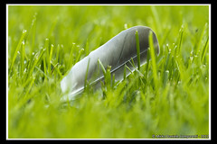 """Lying on the grass <a style=""""margin-left:10px; font-size:0.8em;"""" href=""""http://www.flickr.com/photos/66444177@N04/7194662074/"""" target=""""_blank"""">@flickr</a>"""