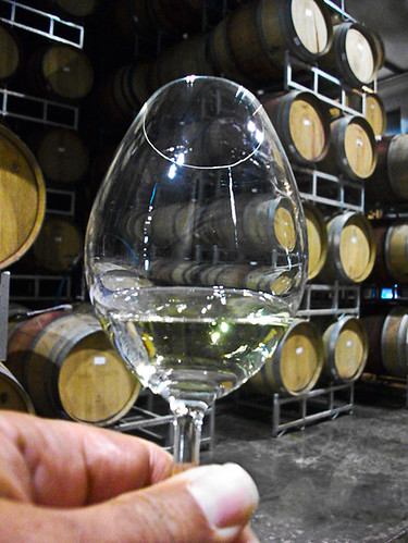 "<p>The focus of the tour is birds, but you also get a ""minor"" in wine study. There is lots to learn, lots to experience and tons of goodies for your taste buds! </p>"