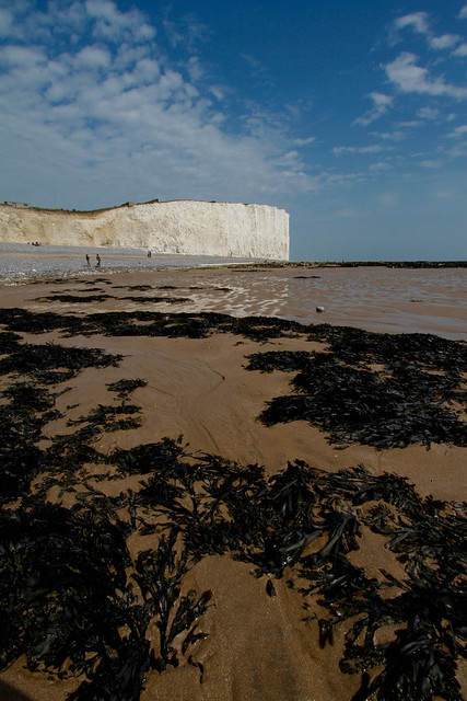 From Birling Gap towards Beachy Head