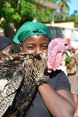 turkey (luca.gargano) Tags: travel haiti caribbean gargano lucagargano ayti