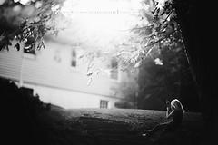 Weeeee through the trees.... (privizzinis passion photography) Tags: trees light people blackandwhite tree girl monochrome leaves childhood children fun outdoors child play outdoor branches joy swing adventure explore treeswing freelensed