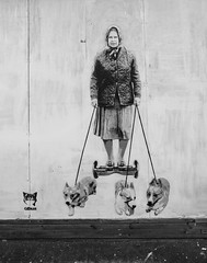Catman - The Queen, her Segway and her Corgies (cocabeenslinky) Tags: street city uk england urban blackandwhite white streetart man black london art cat lumix photography graffiti blackwhite stencil artist photos south graf united capital may kingdom her queen panasonic segway graff catman artiste the 2016 corgies dmcg6 cocabeenslinky
