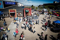 Pier 39 (stefanws) Tags: sf sanfrancisco california blue light shadow people urban walking nikon waterfront pov pigeons crowd streetphotography sunny pedestrian places tourist d750 pier39 visitors fishermanswarf urbanstreet