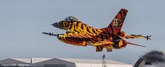 Belgian tiger (NTM 2016) (Ignacio Ferre) Tags: airplane nikon fighter aircraft military tiger zaragoza f16 viper takeoff avin tigre nato otan tigermeet fightingfalcon belgianairforce lezg
