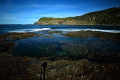 Wybung Head (Paul Hollins) Tags: australia newsouthwales aus freemans catherinehillbay